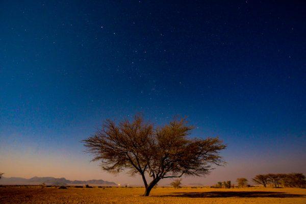 noite africa Namibia quadro decoracao 00002
