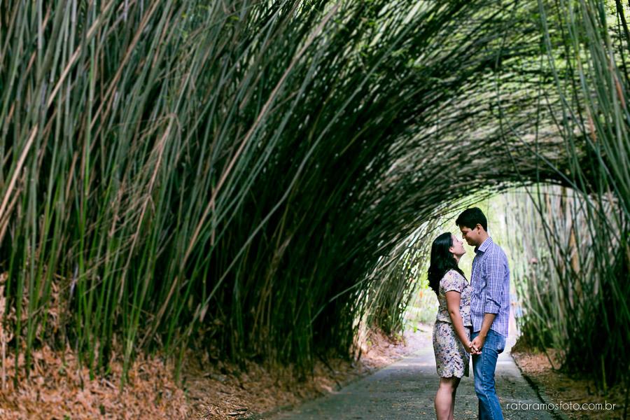 jardim botânico são paulo bambus
