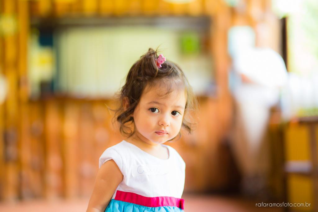Aniversario infantil cia dos bichos cotia festa intantil 2 anos tema pepa pig alice 2 anos 00005