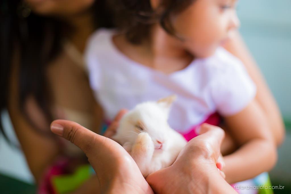 Aniversario infantil cia dos bichos cotia festa intantil 2 anos tema pepa pig alice 2 anos 00009