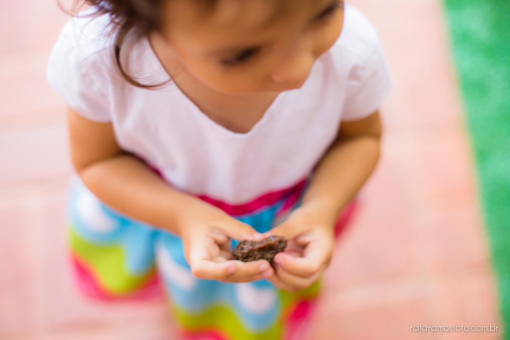 Aniversario infantil cia dos bichos cotia festa intantil 2 anos tema pepa pig alice 2 anos 00021