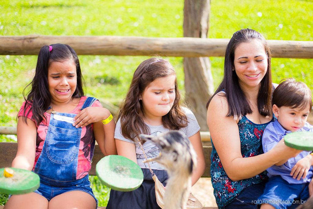 Aniversario infantil cia dos bichos cotia festa intantil 2 anos tema pepa pig alice 2 anos 00026