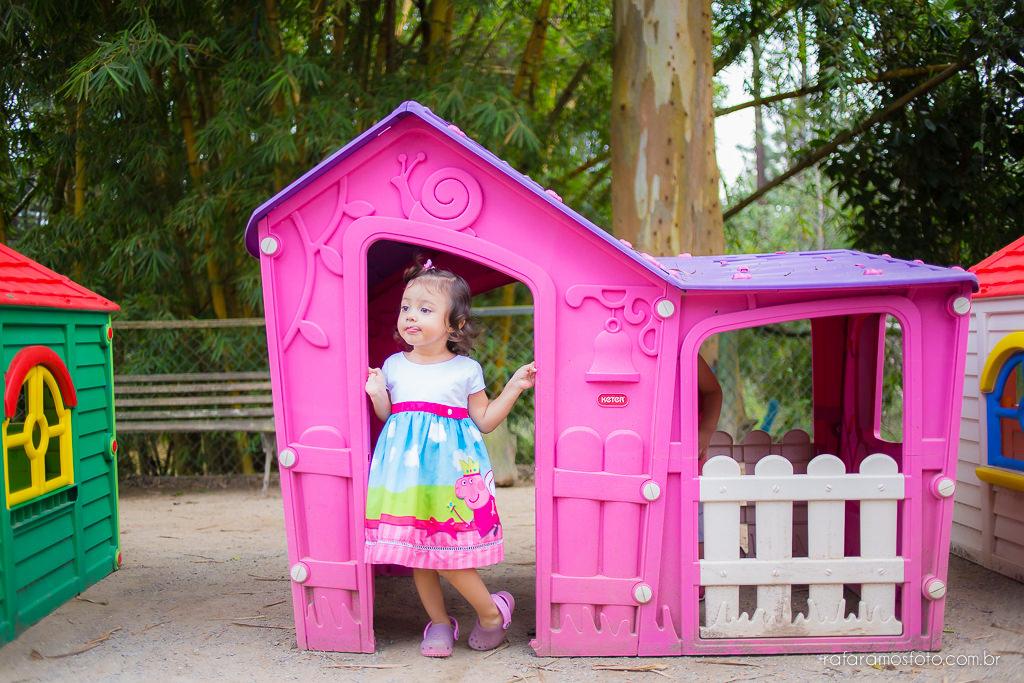 Aniversario infantil cia dos bichos cotia festa intantil 2 anos tema pepa pig alice 2 anos 00034