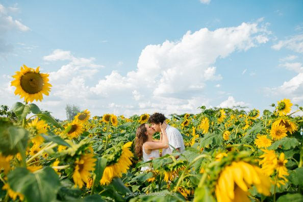 Ensaio pré wedding | Lays e Mau | Ensaio no campo de Girassol