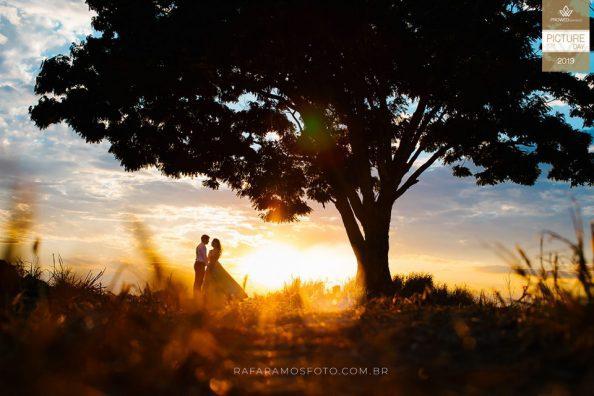 Fotos casamento Premiadas
